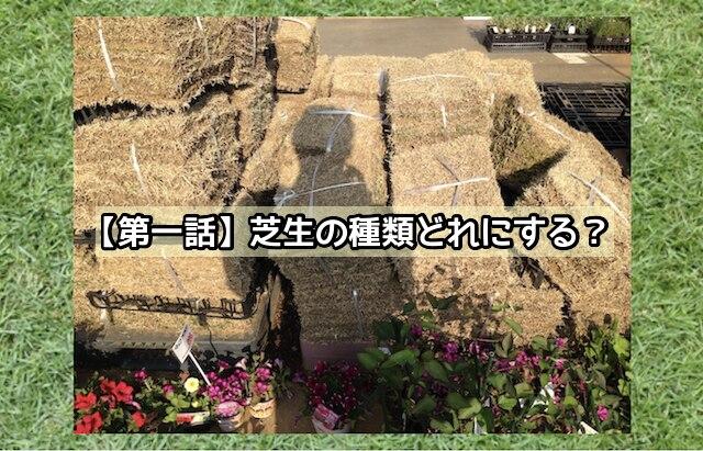 【第一話】芝生の種類どれにする?