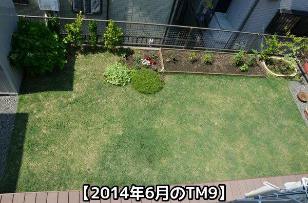 2014年6月のTM9の様子①