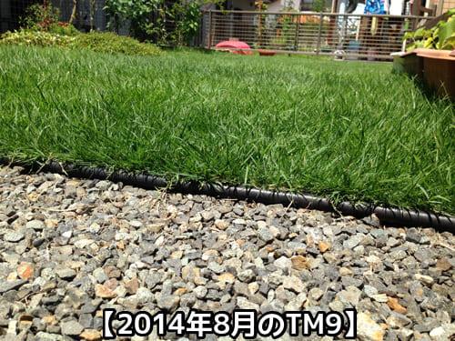 2014年8月のTM9の様子①