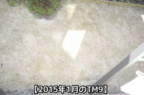 2015年1月のTM9の様子①