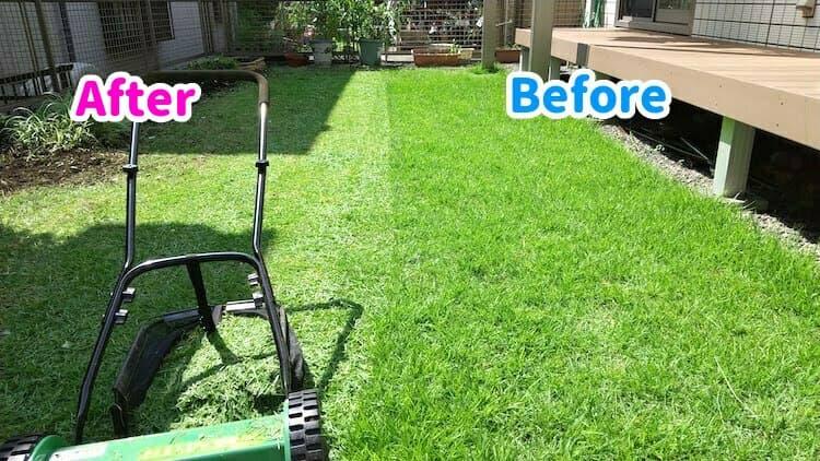 フィールドウッズ手動式芝刈り機 FW-M30Aで刈った芝庭